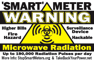 Common Sense About Smart Meters